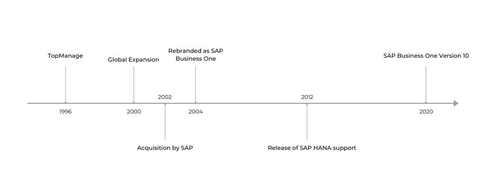 SAP Timeline 1