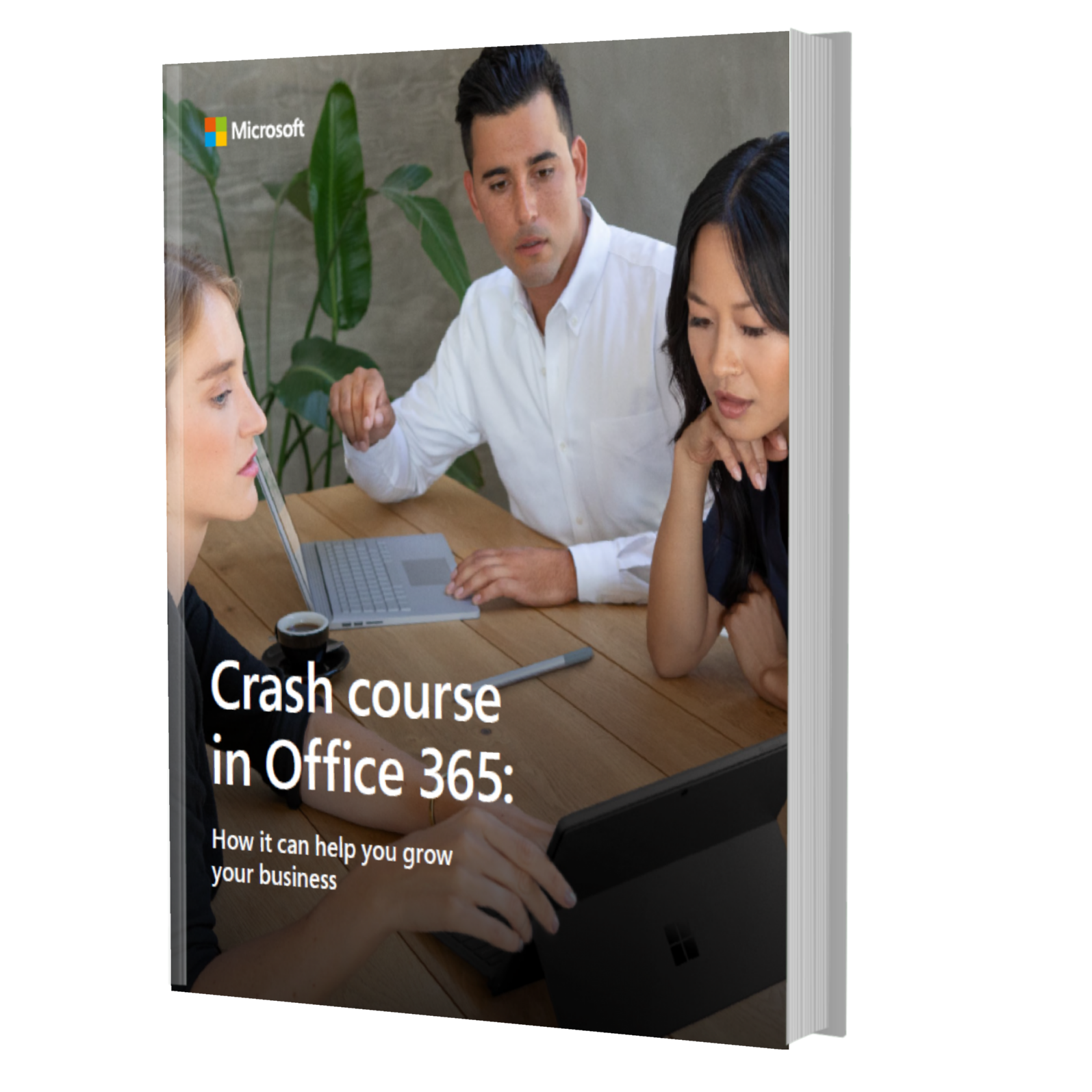 Crash Course in Office 365 - How It Can Grow Your Business Ebook