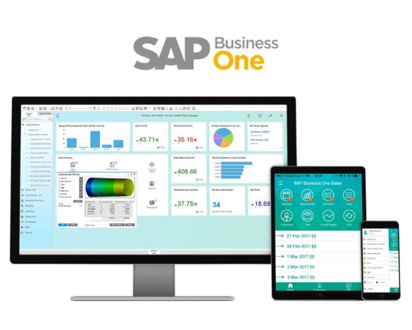 SAP B1 interface with logo_585x468