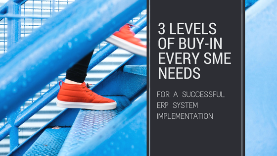 3 Levels Buy-In for ERP Software Implementation
