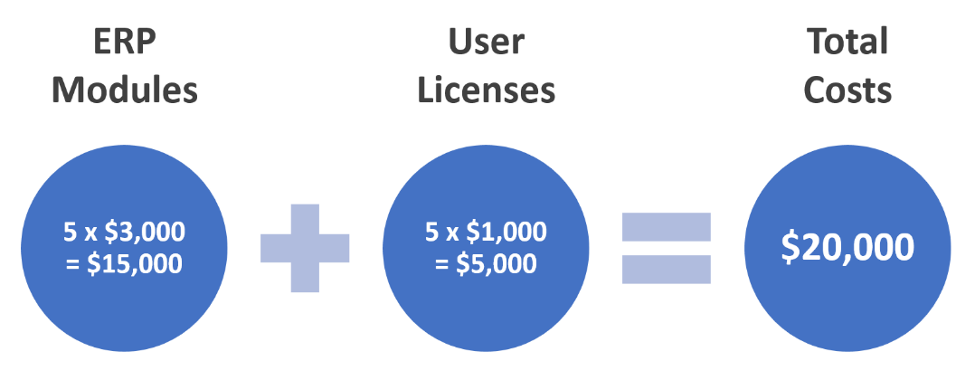 Modular-based ERP Software pricing example