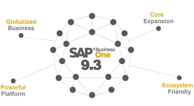 SAP Business One 9.3 (SAP B1 9.3.)