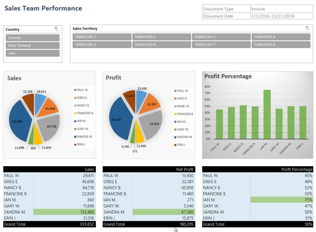 Microsoft Dynamics NAV Jet Reports Sales Team Performance