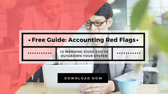 Download the free 15 Accounting System Red Flags Guide here.